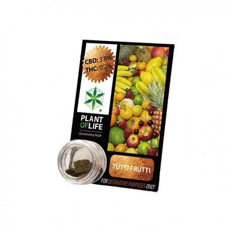 Résine CBD Tuttifrutti 3,8%