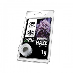 Jelly CBD PURPPLE HAZE 22% 1G