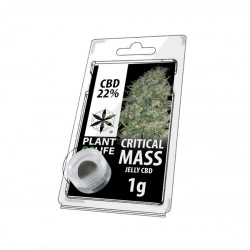 Jelly CBD CRITICAL MASS 22% 1G Plant of Life