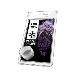 Résine CBD PURPLE HAZE 10% 1G Plant of Life