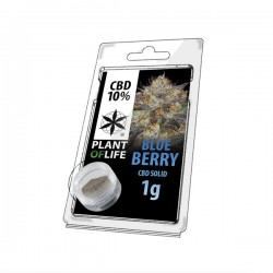 Résine CBD BLUEBERRY 10% 1G Plant of Life