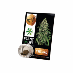 Résine CBD CRITICAL MASS 3,8% 1G Plant of Life