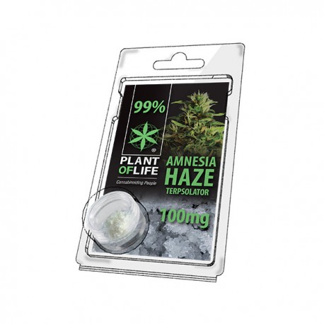 Terpsolator Amnesia Haze 99% CBD - 100mg