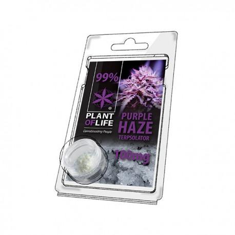 Terpsolator Purple Haze 99% CBD - 100mg