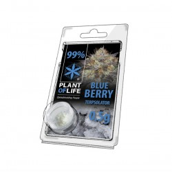 Terpsolator Blueberry 99% CBD - 500mg