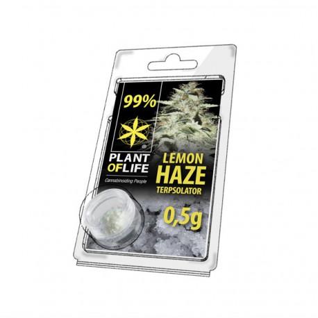 Terpsolator Lemon Haze 99% CBD - 500mg
