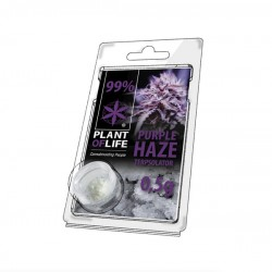 Terpsolator Purple Haze 99% CBD - 500mg