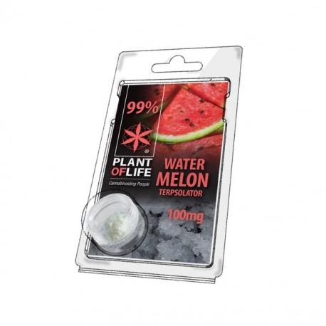 Terpsolator Watermelon 99% CBD - 100mg