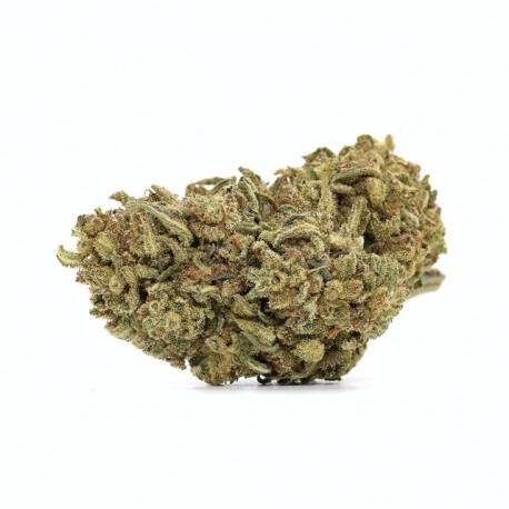 CBD Ringo's Gift 24,7%