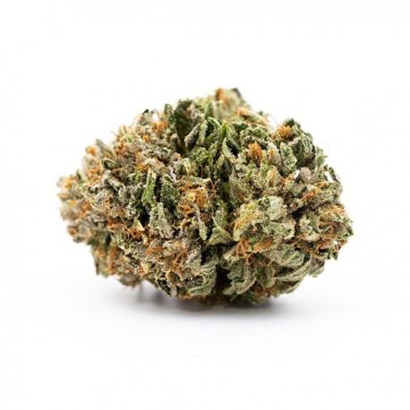 CBD Sweet Tooth 10,5%